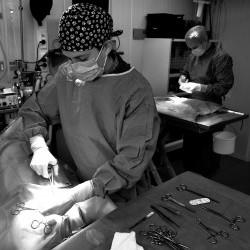Chirurgie/Orthopedie